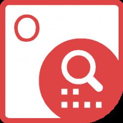 Radmin Remote Control Standard