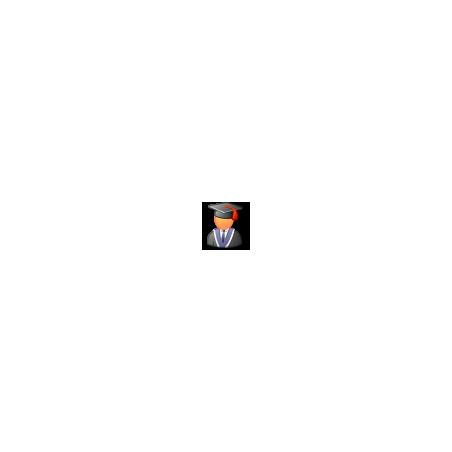 RoboForm Desktop for Windows