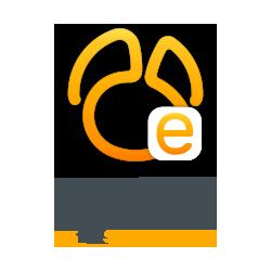 Navicat Essentials for SQL...