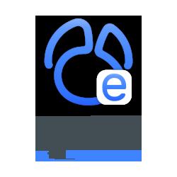 Navicat Essentials for...